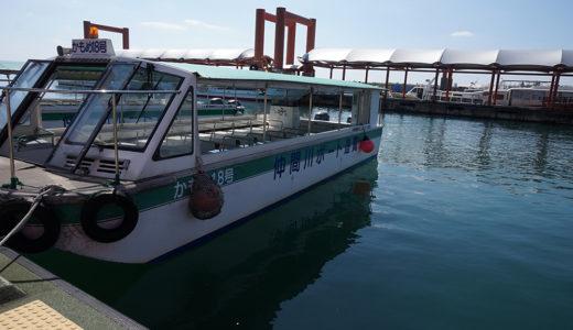 西表島をちょっとだけ堪能したいなら仲間川マングローブクルーズがオススメ!