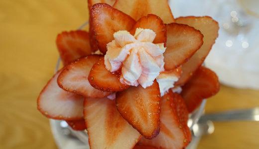 浅草パフェフルーツパーラーゴトーのパフェはもはや美しい花のようですらある!